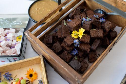 Chocolate chip brownie squares